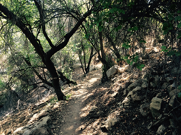 Ohlone-Trail_small